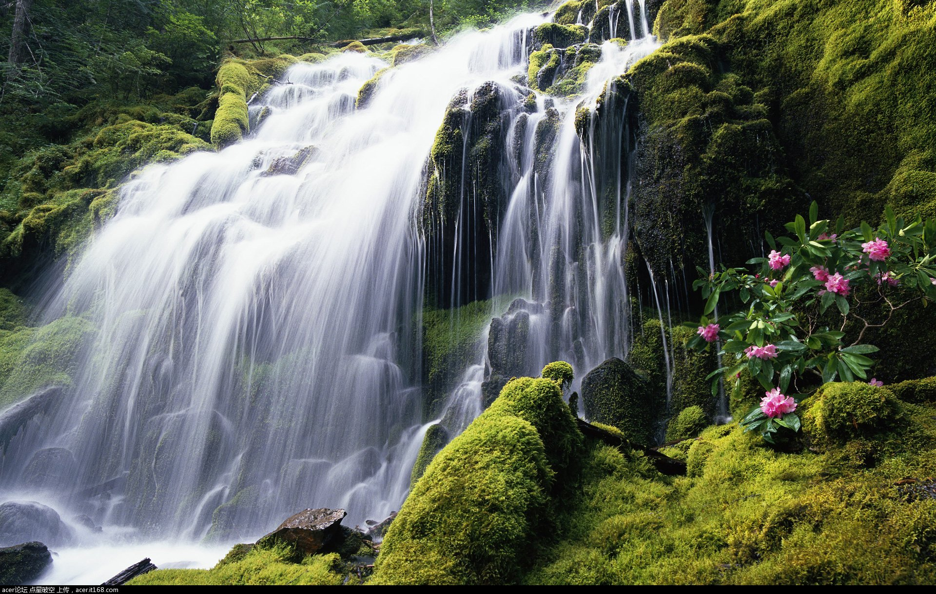壁纸 风景 旅游 瀑布 山水 桌面 1920_1218