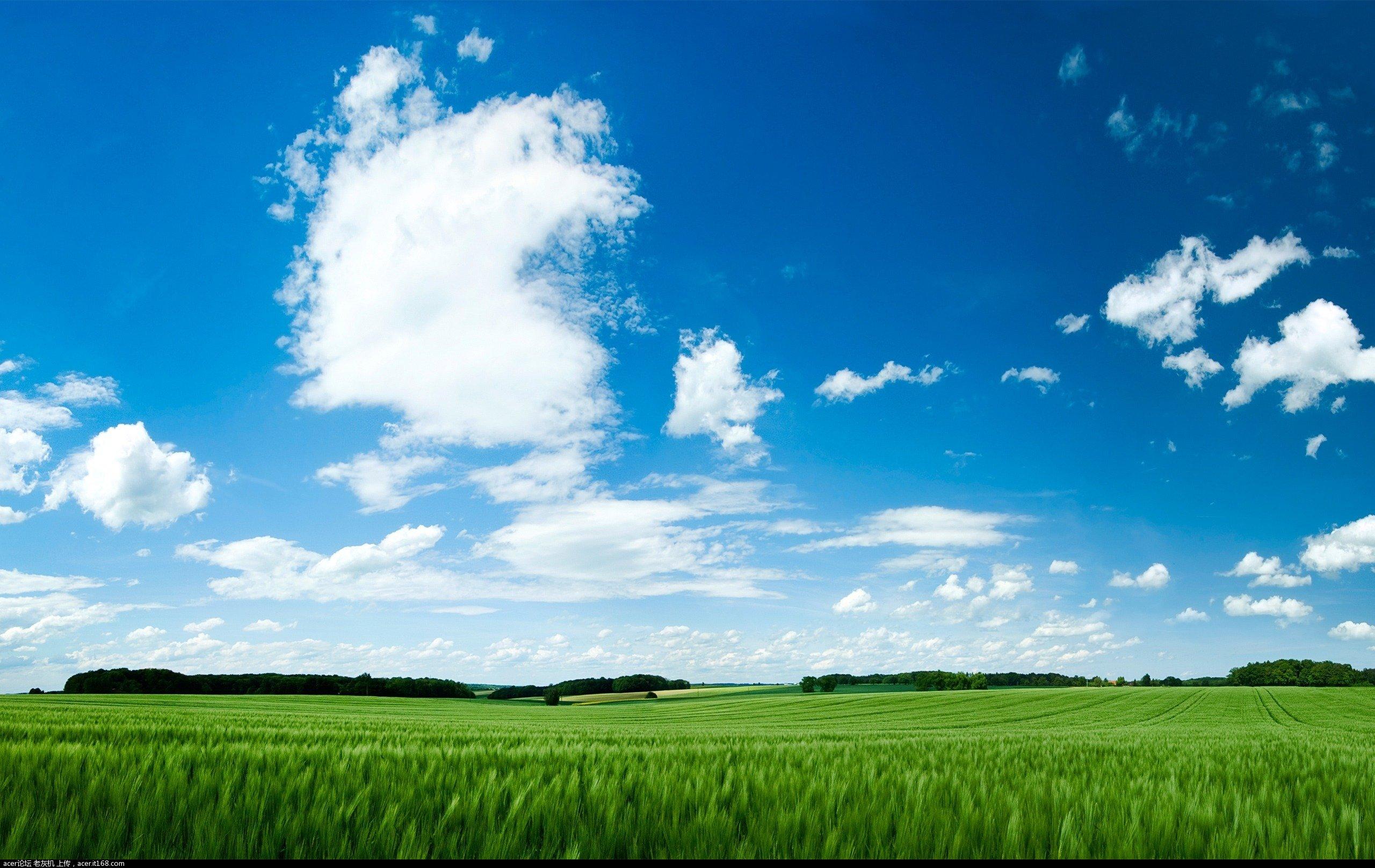 背景 壁纸 草原 风景 天空 桌面 2560_1616
