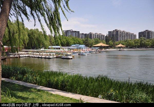 陶然亭公园20.jpg
