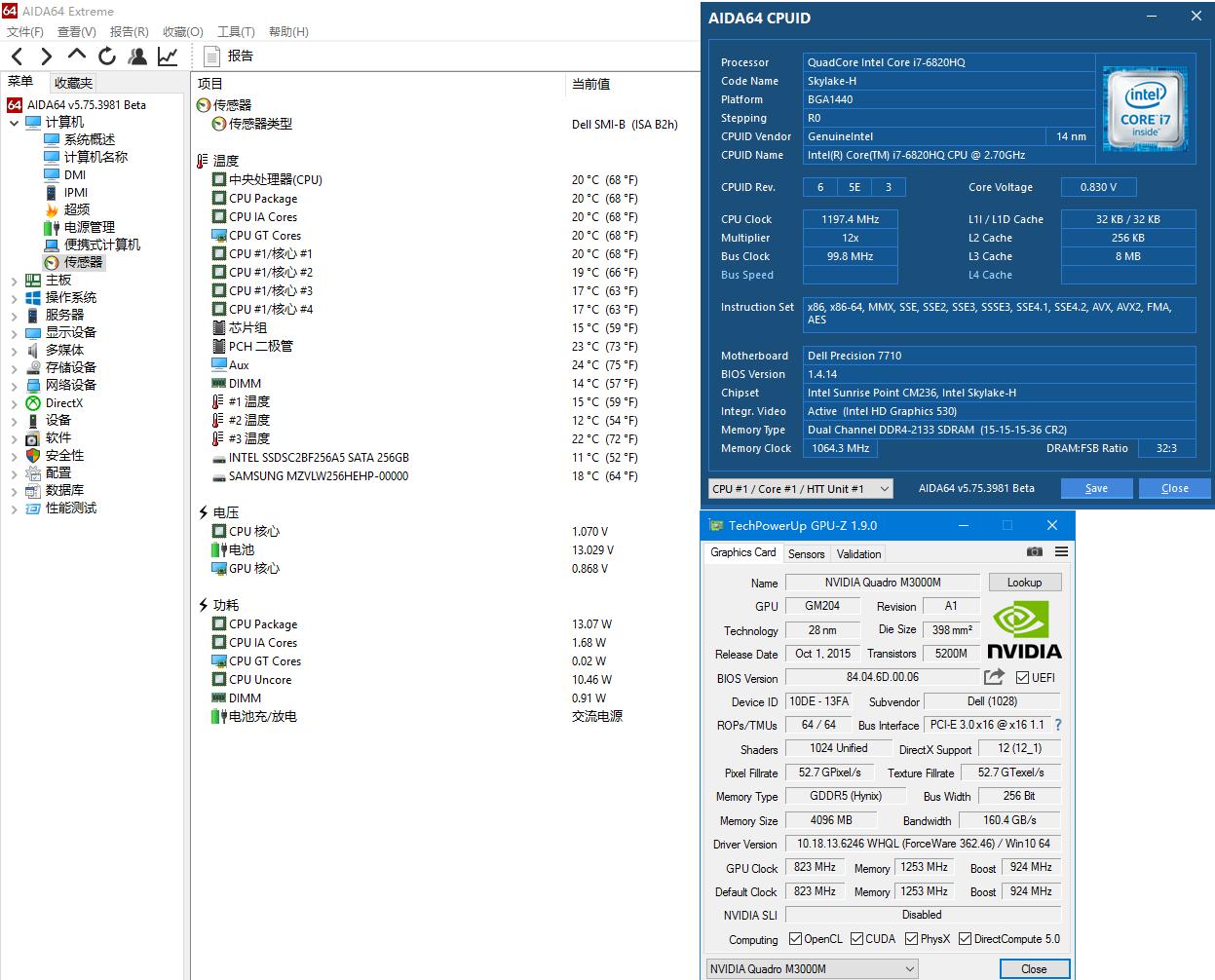 AID64处理器和显卡概览.png