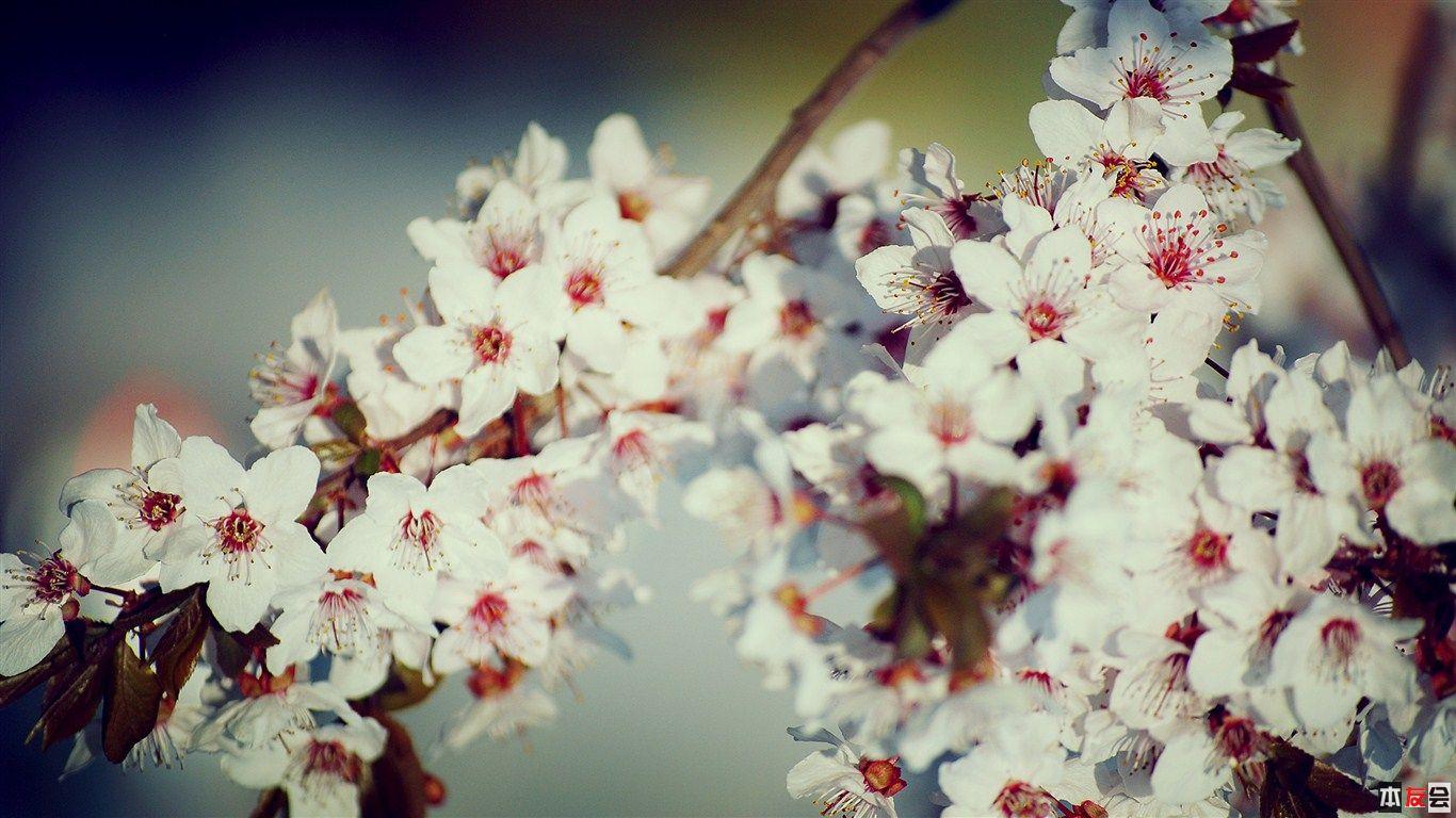 7_by_5Mphoto.jpg